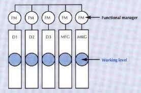 functional managers roles of product project managers in organisations a matter of