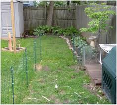 backyards gorgeous 97 best small backyard dogs winsome backyard