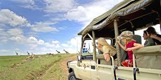 safari family safaris luxury safari holidays