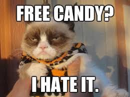 Tard The Cat Meme - top 10 grumpy cat memes in 2018
