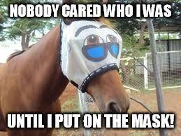 Horse Mask Meme - equine bane imgflip