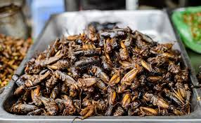insecte cuisine nourriture d insectes chez le cambodge photo stock image du