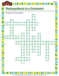 photosynthesis in a crossword u2013 printable 5th grade science worksheet