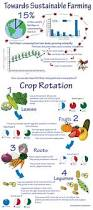 rotating crops when planning your next year garden survivopedia