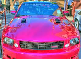 pink saleen mustang license plate