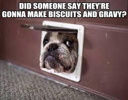 Biscuits Meme - mt tabor ruritan home facebook