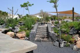 flower power garden centre lanzarote information