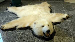 rug polar bear rug hide skin rugs faux bear rug with head