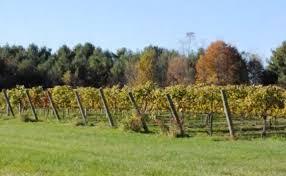 Virginia Winery Map by Landsat Helping In Virginia Wine Country Landsat Science