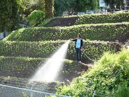 Urban Garden Center Maine 100 Urban Farm And Garden Garden Beds And Planter Boxes