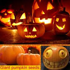 online get cheap large pumpkin decorations aliexpress com