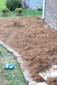 How To Mulch Flower Beds Green Rosemary On The Tv