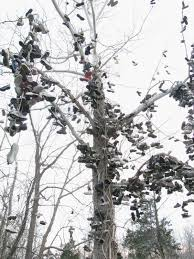 eerie indiana the famous shoe tree milltown indiana