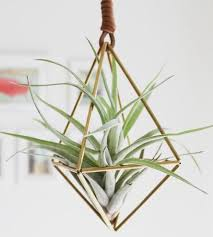 Home Decor Websites Like Urban Outfitters 4 Stores To Find U0027urban Outfitters Style U0027 Decor For Less