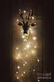 Deer Christmas Lights Brass Deer Head With Christmas Lights Photograph By Sandra Cunningham