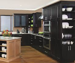 finished kitchen cabinet doors replacement http beingdadusa com