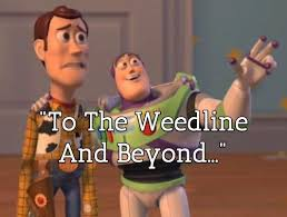 Woody Meme Generator - woody and buzz meme blank and best of the funny meme