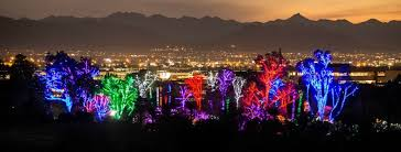 phoenix zoo lights prices discounts phoenix zoo