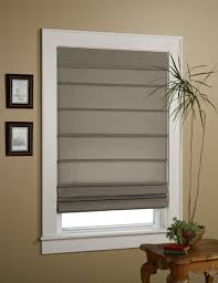 window shade types home decorating inspiration