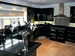 Black Shaker Kitchen Cabinets Black Shaker Cabinets Pauljcantor