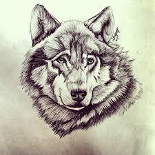 wolf by smonters on deviantart