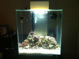 fluval edge marine light fluval edge 46l marine ultimate reef