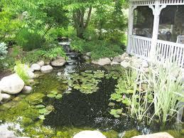 aquaculture indoor ponds japanese koi pond pond designer