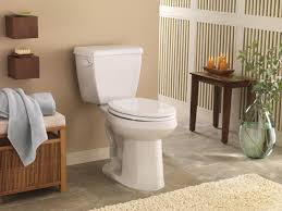 Toilets For Small Bathrooms by Tips For Buying A Toilet Hgtv