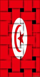 Portugal Flag Hd Best 25 Tunisia Flag Ideas On Pinterest Tunisia Hammamet