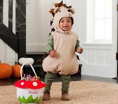 12 Month Boy Halloween Costumes Hedgehog Halloween Costume 12 24 Months Pottery Barn Kids