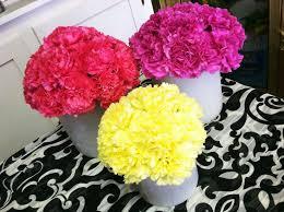 Carnation Flower Ball Centerpiece by 15 Best Carnations Images On Pinterest Carnation Centerpieces