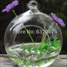 compare prices on hanging terrarium globe online shopping buy low