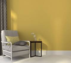 cost to paint interior of home how much to paint a house cost