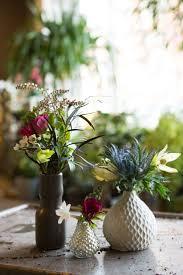 inspiring indoor gardens u2013 wilson garden
