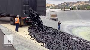 la throws 96 million u0027shade balls u0027 at its water shortage u2014 and
