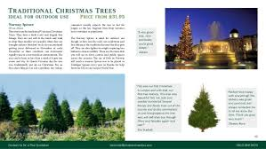 Christmas Outdoor Decoration Services by Christmas Decoration Service Brochure