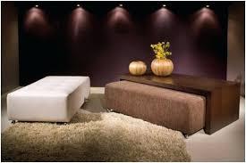 ottoman under coffee table u2013 fieldofscreams