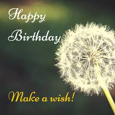 ultimate list of wishes for birthday occasions