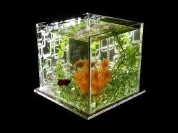 150 best lc aquariums images on aquarium design fish