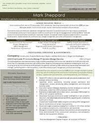 management skills in resume executive resume entrepreneur u2014 premium executive resume writing