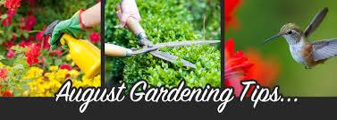 august gardening tips u0026 tasks missouri summerwinds nursery