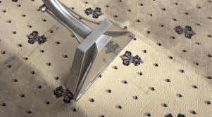 Clean Area Rugs Saracares Area Rug Cleaning