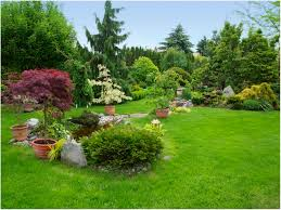 backyards stupendous landscape design in sammamish sublime