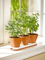 dining room decorations window sill kitchen garden ideas what is