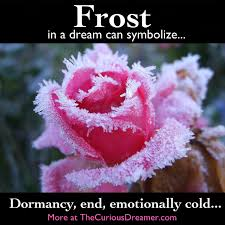 Meaning Of Pink Roses Flowers - a dream symbol of frost can represent more at www