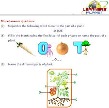 grade 2 evs part 3 1 0 apk download android education apps