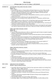 employment resume exles director employee relations resume sles velvet