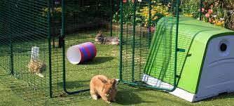 outdoor rabbit run large outdoor rabbit enclosure