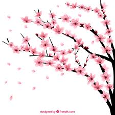 cherry tree with flowers vector free