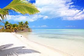 belize special offers belize resorts discounts belize resorts